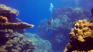 Best Countries For A Scuba Egypt